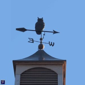 Owl Weathervane on Arrow