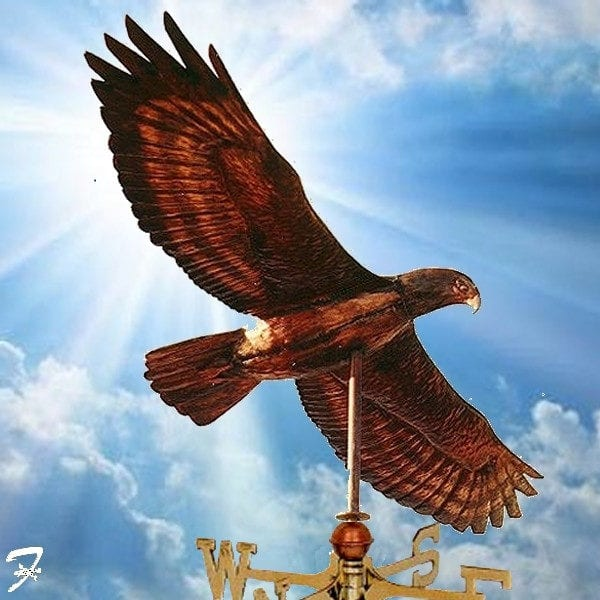 weathervane Bird Hawk
