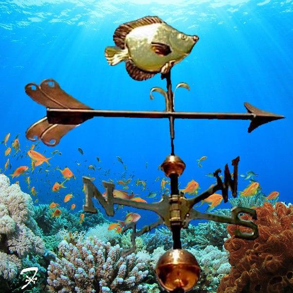 Tropical Fish Weathervane – Ferro Weathervanes