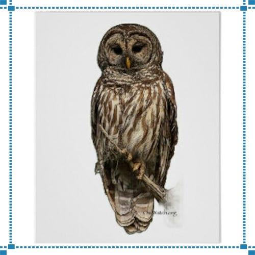Barred Owls Weathervane – Rawson Residence